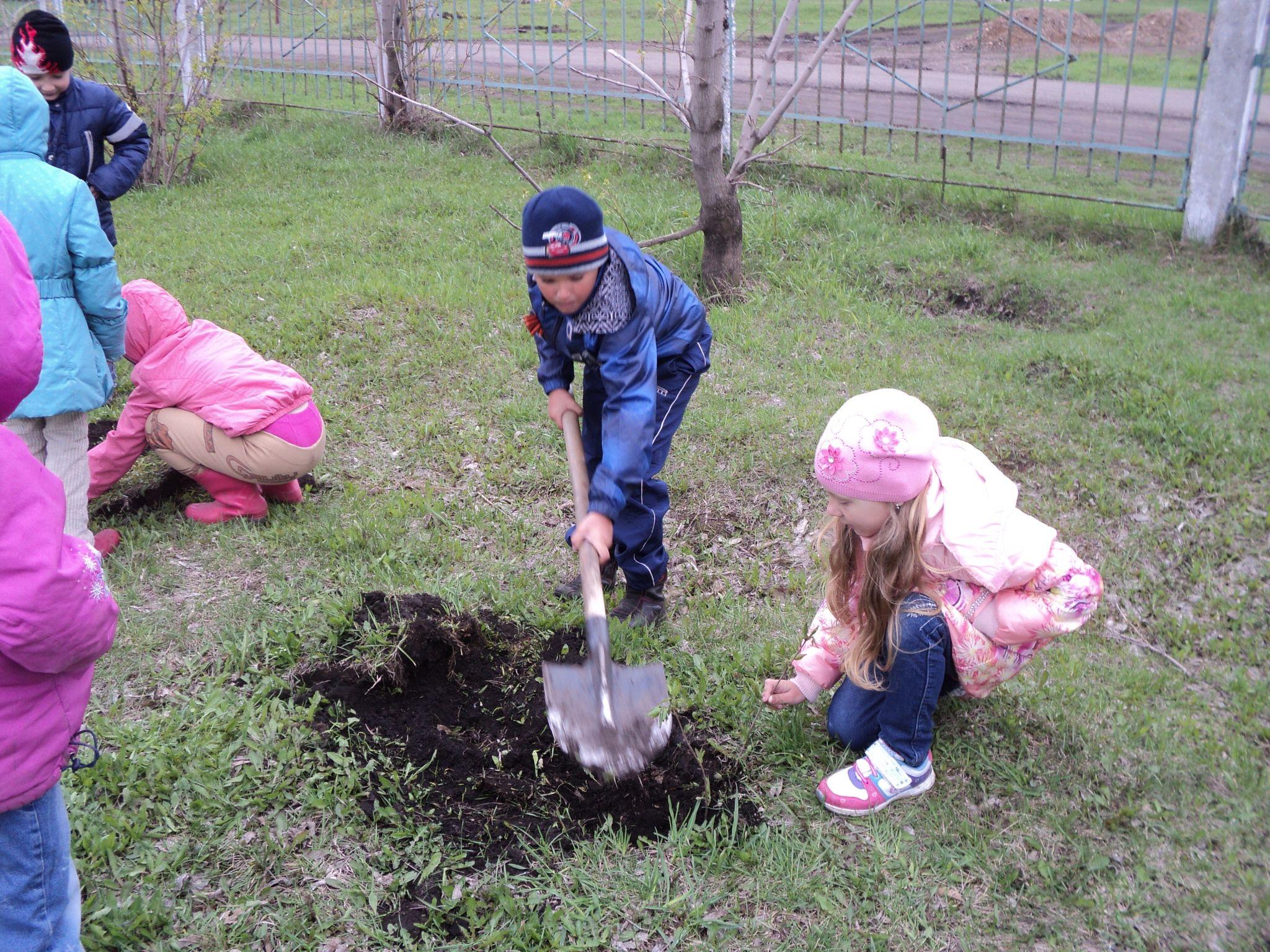 Дети сажают цветы фото